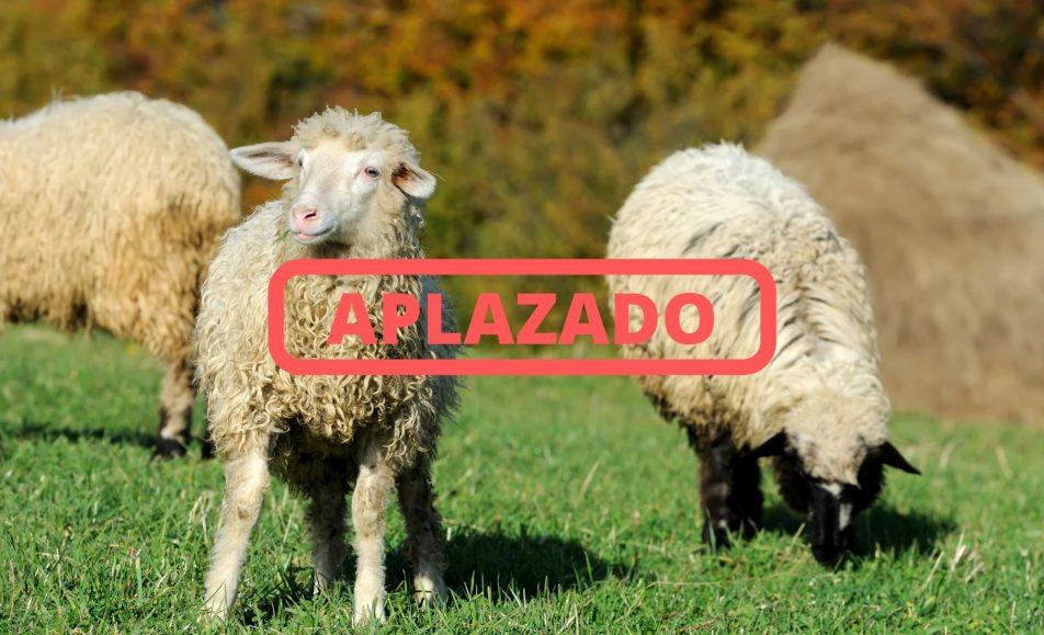 Expolugo 2020 A Rural