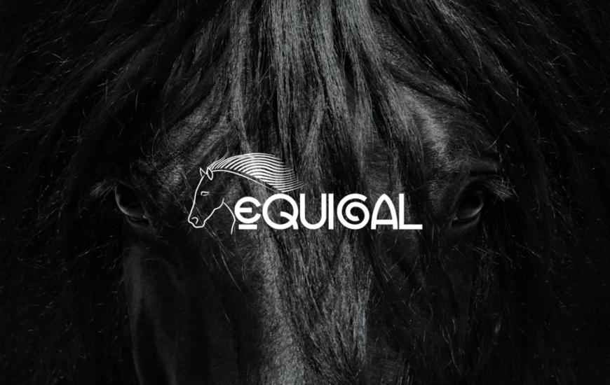 Equigal confirma a Lugo como referente equino
